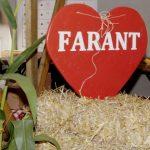 Farantfest 2021